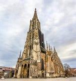 Mening van Ulm-Munster - Duitsland royalty-vrije stock fotografie