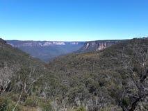 Mening van vallei en bergen met eucalyptusbomen op een duidelijke blauwe hemeldag in Jamison Valley NSW Australië royalty-vrije stock afbeelding