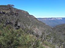 Mening van vallei en bergen met eucalyptusbomen op een duidelijke blauwe hemeldag in Jamison Valley NSW Australië stock afbeelding