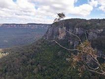 Mening van vallei en bergen met eucalyptusbomen op een duidelijke blauwe hemeldag in Jamison Valley NSW Australië stock afbeeldingen