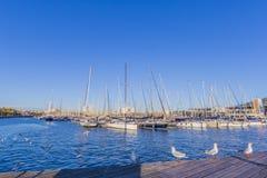 Mening van varende die boten in de pijler van Barcelona Spanje worden verankerd stock foto