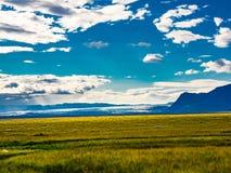 Mening van Vatnajokull-Gletsjer en een grasgebied Stock Foto's