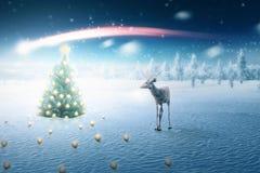 Mening van verfraaide Kerstmisbomen met herten Royalty-vrije Stock Afbeeldingen