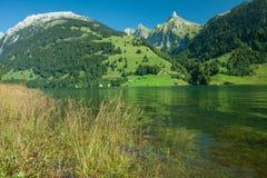 Mening van Wägitalersee lakefront aan Zindlenspitz, Schwyz Royalty-vrije Stock Afbeelding
