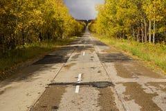 Mening van weg in de herfst Royalty-vrije Stock Afbeelding
