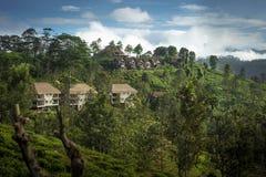 Mening van Weinig Piek van Adam ` s Berglandschap in Sri Lanka, Piekella van Weinig Adam, Sri Lanka royalty-vrije stock foto