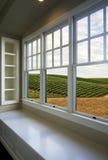 Mening van wijngaarden stock afbeeldingen