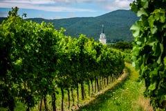 Mening van wijngaarden en St Anna Catholic Church dichtbij Soos Sooss royalty-vrije stock afbeeldingen