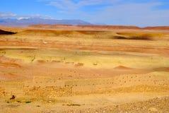 Mening van Woestijn, Ait Ben Haddou, Marokko Royalty-vrije Stock Foto's