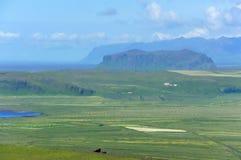 Mening van zuidenkust in Dyrholaey, IJsland royalty-vrije stock foto