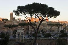 Mening vanaf de bovenkant van de oude ruïnes van Roman Forum Stock Foto