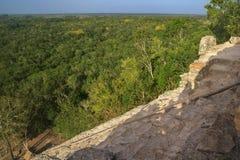Mening vanaf de bovenkant van de piramide van Nohoch Mul in Coba Stock Afbeeldingen