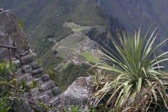 Mening vanaf de bovenkant van Wijn Picchu Royalty-vrije Stock Foto