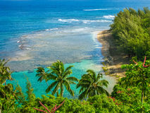 mening vanaf de bovenkant: zon en palmen, eiland Royalty-vrije Stock Afbeelding