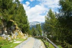 Mening voor bergen en meer Malga Bissina Stock Foto