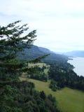Meningen over de rivier van Colombia staat Oregon de V.S. Stock Afbeelding