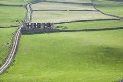 Meningen over ruïnes op een groen gebied van Torrhoofden in Noord-Ierland stock foto's