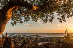 Meningen rond Curacao Caraïbisch eiland royalty-vrije stock foto
