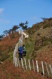 Meningen rond de vallei Ogwen Stock Fotografie