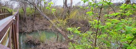 Meningen van Bruggen en Wegen langs de slepen van het de Rivierfront van Cumberland van Shelby Bottoms Greenway en van het Natuur stock fotografie