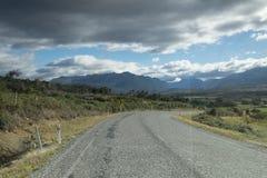 Meningen van de bergen en de installaties van Nieuw Zeeland D Y Stock Foto's