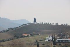 Meningen van de wijngaarden van Sandeman - Portugal royalty-vrije stock afbeelding