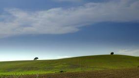 Meningen van het vruchtbare land van de rollende uitlopers op de weg tussen Arcos de la Frontera en Gr Bosque op de grens van stock fotografie