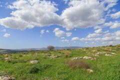 Meningen van Onderstel Arbel en rotsen israël Royalty-vrije Stock Afbeelding