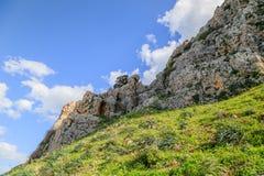 Meningen van Onderstel Arbel en rotsen isrel Stock Foto