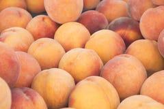 Meningsclose-up van verse perziken Sappige perziken Heel wat perziken Hoop van perziken Royalty-vrije Stock Afbeeldingen