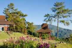 Meningspunt van Huai Nam Dang National-park Stock Foto
