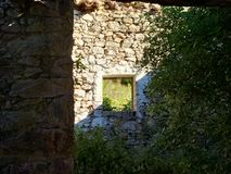 Meningstrog het venster Stock Foto