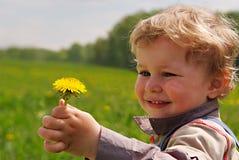 Menino adorável com dente-de-leão à disposicão Imagens de Stock