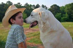Menino & cão fotografia de stock