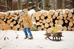 Menino apenas no inverno na floresta fotos de stock