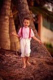 Menino bonito à moda que explora o bosque tropical da palma imagens de stock royalty free