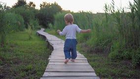 Menino bonito ativo da criança pequena que anda na ponte de madeira com os pés descalços no ar livre entre a vegetação alta video estoque