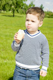 Menino bonito com gelado Fotografia de Stock Royalty Free