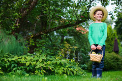 Menino bonito com maçãs Foto de Stock