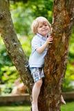 Menino bonito da criança que aprecia a escalada na árvore Foto de Stock