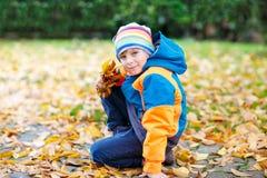 Menino bonito feliz da criança com as folhas de outono que jogam no jardim Fotografia de Stock Royalty Free