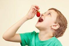 Menino bonito novo que come a morango vermelha fresca Fotografia de Stock Royalty Free