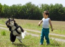 Menino bonito que joga o esforço com seu cão Fotos de Stock Royalty Free