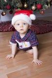 Menino bonito que joga sob a árvore de Natal com chapéu de Santa Fotografia de Stock Royalty Free