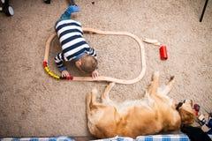 Menino, cão, trem Fotos de Stock Royalty Free