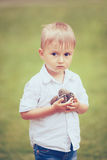 Menino caucasiano com cones do pinho Imagem de Stock