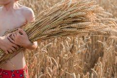 Menino com as orelhas de milho no campo do cereal Fotografia de Stock Royalty Free