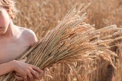 Menino com as orelhas de milho no campo do cereal Fotografia de Stock
