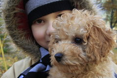Menino com cão pequeno fotos de stock royalty free