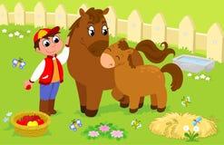 Menino com cavalo bonito e potro. Imagens de Stock